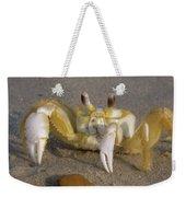 Hermit Crab Weekender Tote Bag