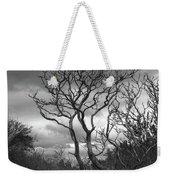 Hermit Island Tree 0192 Weekender Tote Bag