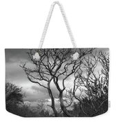 Hermit Island Tree 0912 Weekender Tote Bag