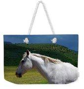 Hero's Horse-colorful Background Weekender Tote Bag
