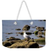 Herring Gull At Charmouth Weekender Tote Bag