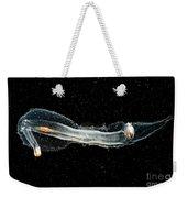Heteropod Mollusk Weekender Tote Bag