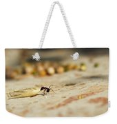 Hey Ant Dragging An Oat Seed Weekender Tote Bag