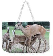 Hey, Can I Have Some? Weekender Tote Bag
