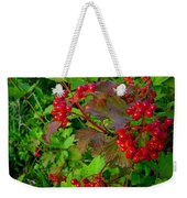 Hi Bush Cranberry Close Up Weekender Tote Bag