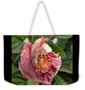 Hibiscus Bloom Closed In The Rain   End View      May           Indiana      Weekender Tote Bag