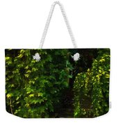 Hidden Hermitage Weekender Tote Bag