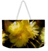 High Angle View Of Cactus Flowers Weekender Tote Bag