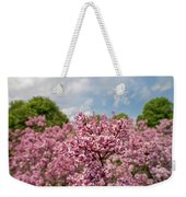 Highland Park Lilacs Detail Rochester Ny Weekender Tote Bag