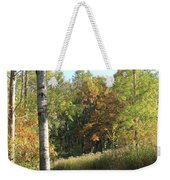 Hiking Trail In Autumn Sunset Weekender Tote Bag