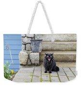 Hissing Cat Weekender Tote Bag