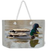 Two Mallards Swimming Quietly Weekender Tote Bag