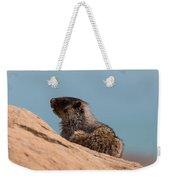 Hoary Marmot On Blue Weekender Tote Bag