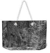 Hoh Rain Forest 3369 Weekender Tote Bag