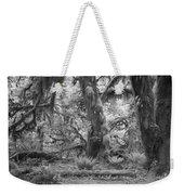 Hoh Rain Forest 3381 Weekender Tote Bag