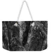 Hoh Rain Forest 3406 Weekender Tote Bag