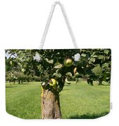 Hollow Apple Tree Weekender Tote Bag