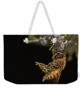 Honey Bee Kick, Apis Mellifera Weekender Tote Bag