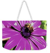 Honey Bee On A Spring Flower Weekender Tote Bag