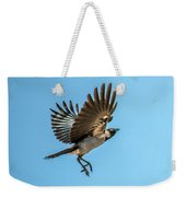 Hooded Crow In Flight Weekender Tote Bag