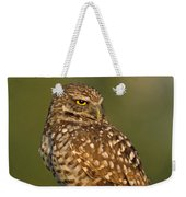 Hoot A Burrowing Owl Portrait Weekender Tote Bag