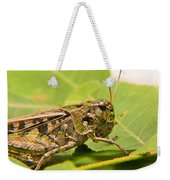 Hopper Face To Face Weekender Tote Bag