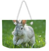 Hopping Rabbit Weekender Tote Bag