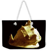 Horned Helmet Seashell Cassis Cornuta Weekender Tote Bag