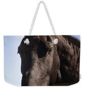 Horse By A Fence. Weekender Tote Bag