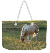 Horse Feeding In Grass Farm With Sunset Light From The Left Weekender Tote Bag