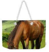 Horse Grazing Weekender Tote Bag