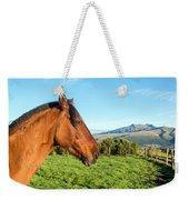 Horse Head Closeup Weekender Tote Bag