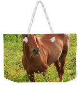 Horse In A Field With Flowers Weekender Tote Bag