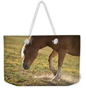 Horse Pawing In Pasture Weekender Tote Bag by Steve Gadomski