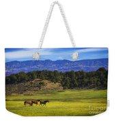 Horse Play Weekender Tote Bag