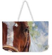 Horse Portrait Closeup Weekender Tote Bag