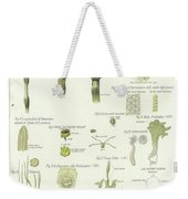 Horse Tail And Pillwort Weekender Tote Bag
