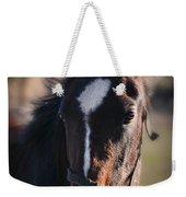 Horse Whispering Weekender Tote Bag