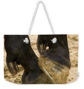 Horses Feet Weekender Tote Bag