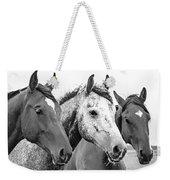 Horses - Id 16217-202749-4749 Weekender Tote Bag