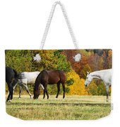 Horses In Autumn Weekender Tote Bag