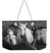 Horses In Black And White Weekender Tote Bag