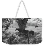 Horses In The Pasture Weekender Tote Bag