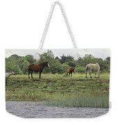 Horses On Ireland's River Shannon Weekender Tote Bag