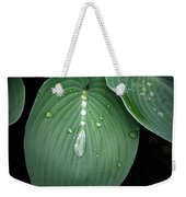 Hostas After The Rain Weekender Tote Bag