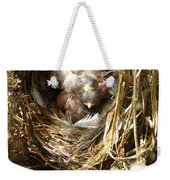 House Wren Family Weekender Tote Bag