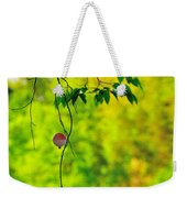 How To Catch A Tree Weekender Tote Bag