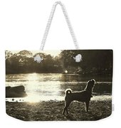 Howl At The Sun Weekender Tote Bag
