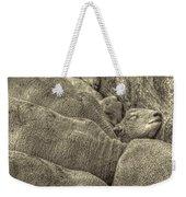 Huddled Yearling Rams Weekender Tote Bag