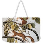 Hudsons Bay Squirrel Weekender Tote Bag
